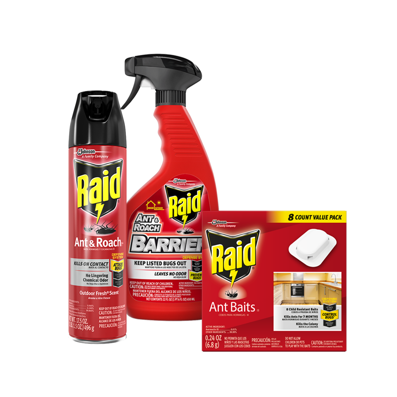 Raid 174 Pest Control Solutions Pest Control